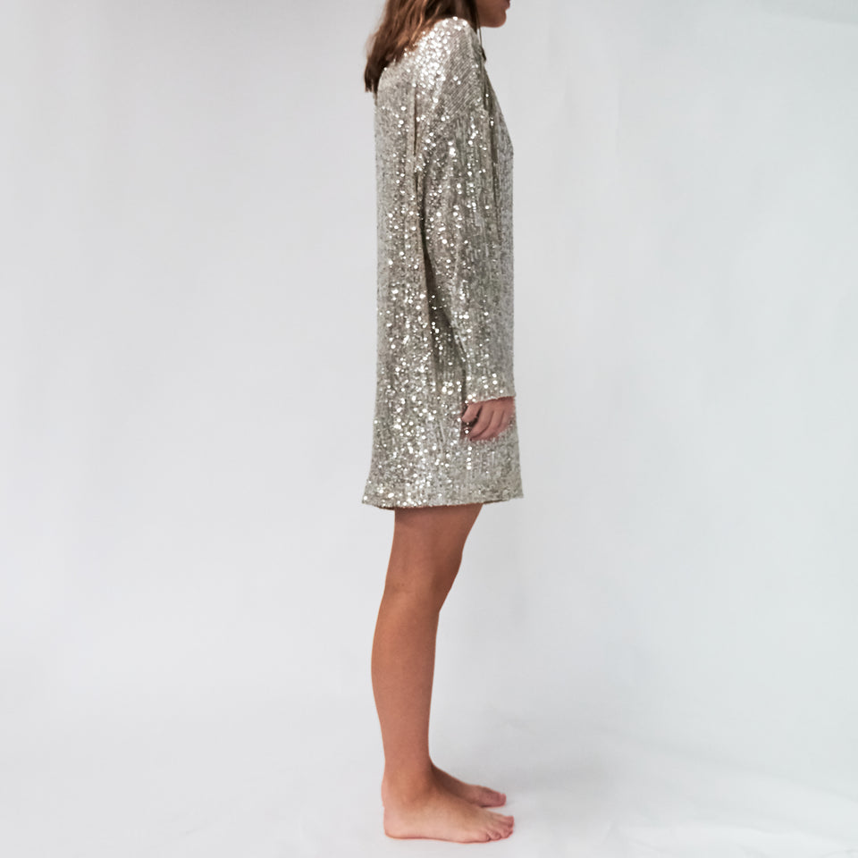 Alexandra Sequined Dress