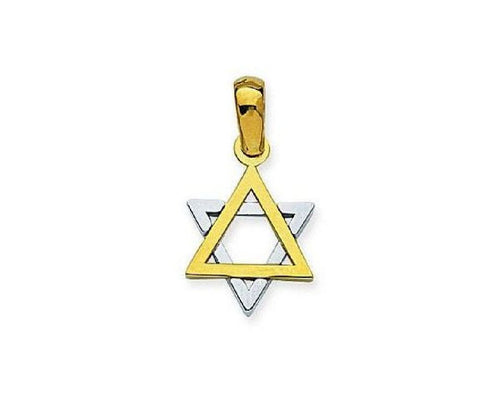 14kt Gold Two Tone Jewish Star Pendant