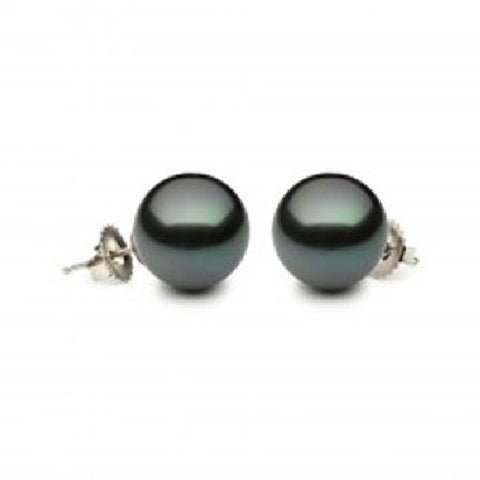 9.5-10.0mm Tahitian Pearl Stud Earrings