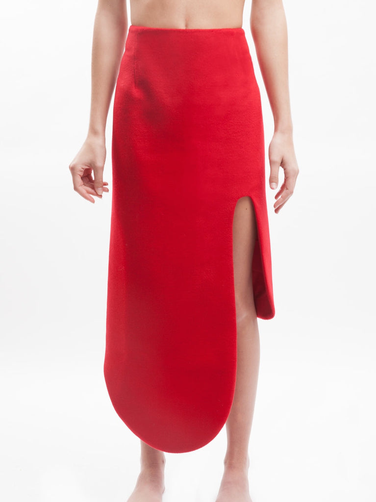Karla Spetic  - Curve Contour Skirt