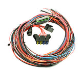 "AEM EMS-4 96"" Wiring Harness with Fuse & Relay Panel"