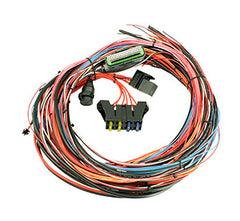 30 2905 96_Product_Main_medium?v=1377983173 proefi 48 ecu induction performance 2jz standalone wiring harness at edmiracle.co