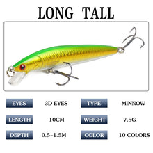 Load image into Gallery viewer, TOP Selling 10Pc Minnow set