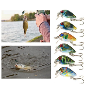 6 PCS Fishing Lure Set 2.5cm / 2.7g Mini Crank Baits