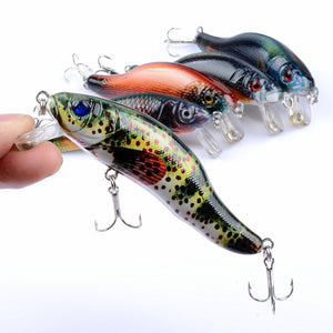 5PC SET Lifelike Minnow Fishing Lures