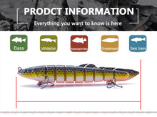 Load image into Gallery viewer, Slithering Segmented eel lure set