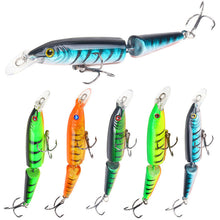 Load image into Gallery viewer, Crazy Lure 5-Pc set 105mm 9g 2 Segments Fishing Lures