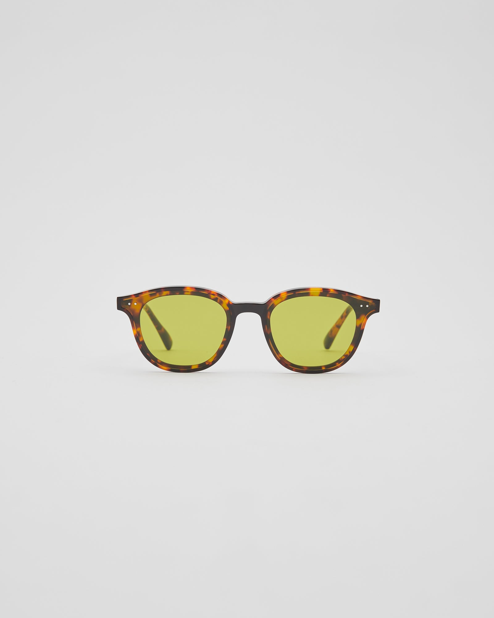 Lang-T1 Sunglasses in Tortoise
