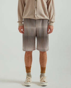 Mesh Shorts in Beige