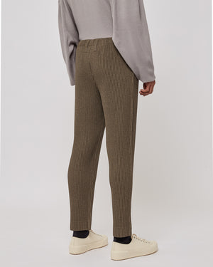 Slim Pleated Pants in Brown