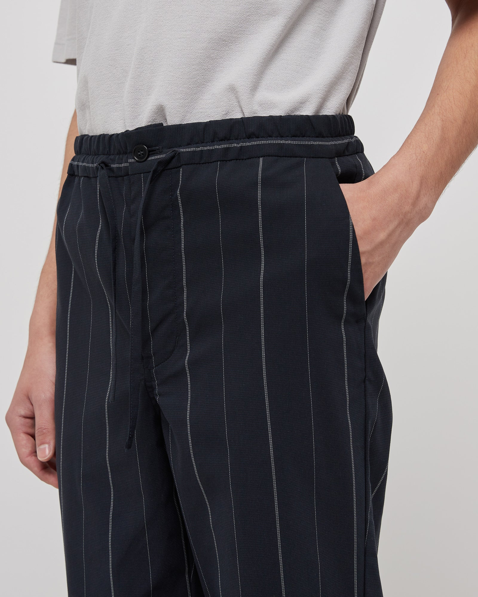 Regular Straight Pants in Navy Stripe