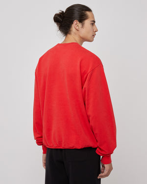 Wellness Ivy Crewneck in Sport Red/White