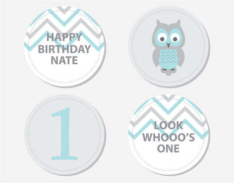 Blue Owl Birthday Party Labels