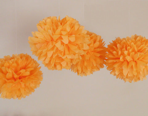 Orange Pom Poms