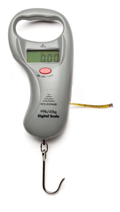 reliable accurate digital scale