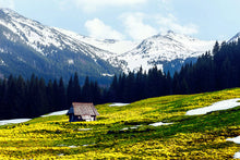 Load image into Gallery viewer, Poly Canvas Print - Float Frame - Photography - Old Wooden Hut in Spring High on the Tatras Mountains