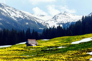 Poly Canvas Print - Float Frame - Photography - Old Wooden Hut in Spring High on the Tatras Mountains
