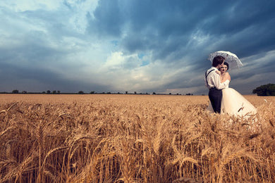 Poly Canvas Print - Photography - Man and Woman Embrace in a Wheat Field