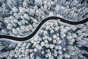 Poly Canvas Print - XXL - Photography - Landscape of Curvy Road Snaking Through Snowy Forest