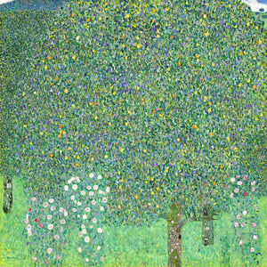 Poly Canvas Print - The Masters - Gustav Klimt - Rosebushes Under the Trees