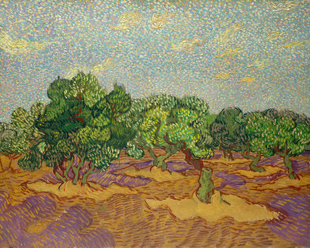 Poly Canvas Print - The Masters - Van Gogh - Olive Trees