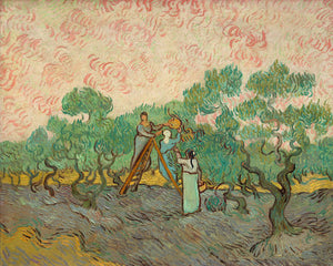 Poly Canvas Print - Float Frame - The Masters - Van Gogh - Women Picking Olives