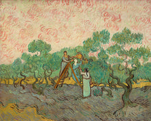 Load image into Gallery viewer, Poly Canvas Print - Float Frame - The Masters - Van Gogh - Women Picking Olives