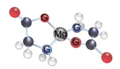 Magnesium Glycinate chemical structure