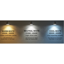 Load image into Gallery viewer, Warm/Cool White 1.5Watt/ft 12V 140lm/ft  16ft (5m)