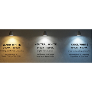 COB LED Flexible Strip Light - Warm/Cool White 4.5Watt/ft 24V 110lm/ft  16ft (5m)
