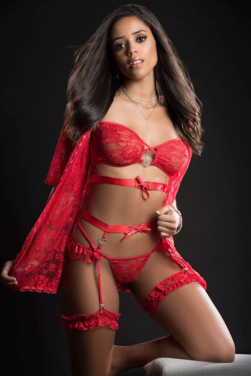 25% OFF | 2021 Best Deals |  4pc mini robe hiphugger and bra lingerie garter set one size candy red