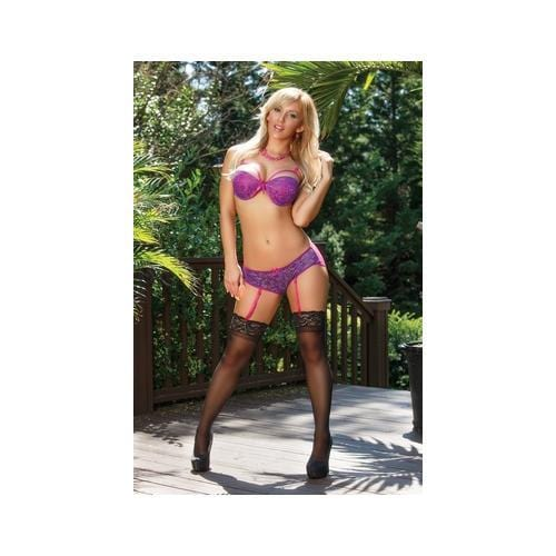sheer passion bra gartered panty set 3x 4x