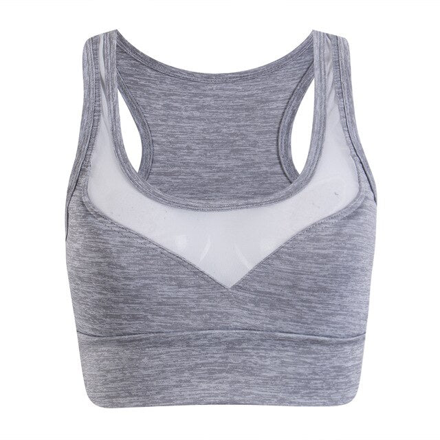Seamless Wireless Push Up Sports Bra