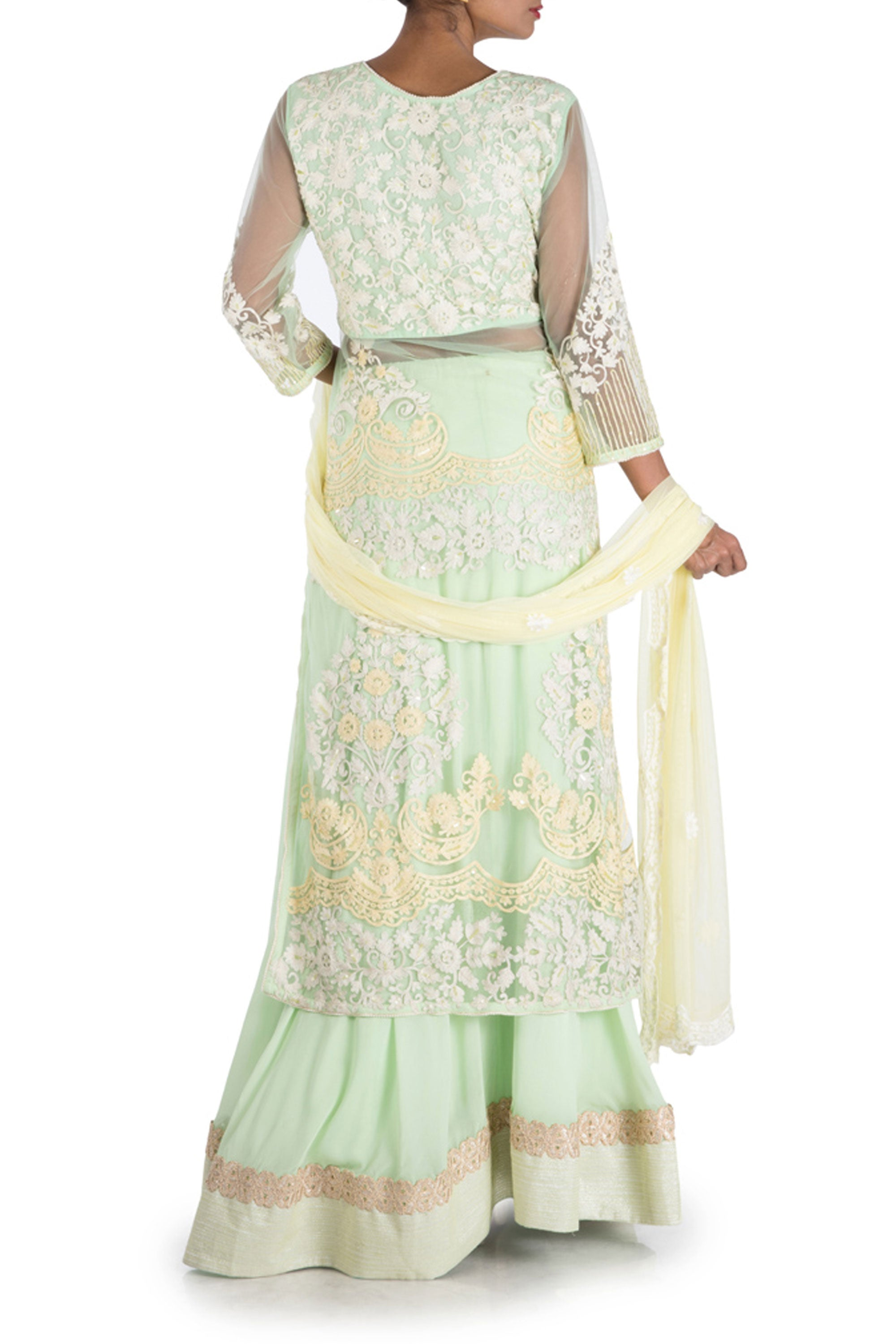 Pastel Green Sheer Jacket Lehenga Set Back