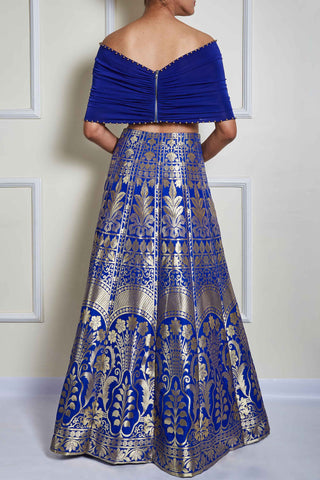 Blue Banarasi Skirt Set