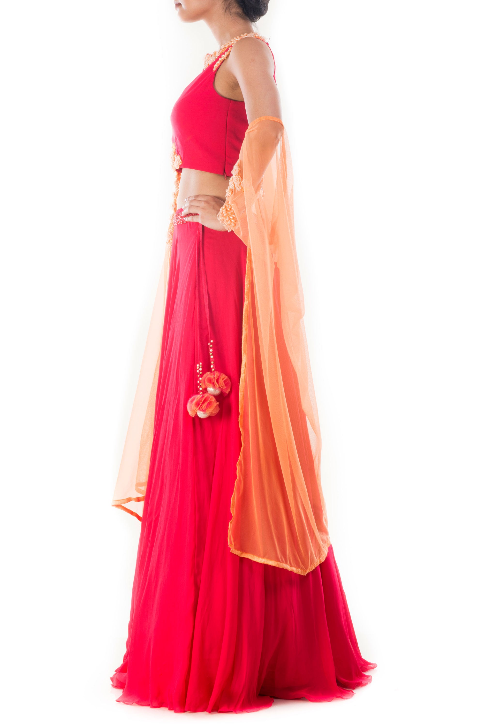 Rani Pink Crop Top & Lehenga Set Side