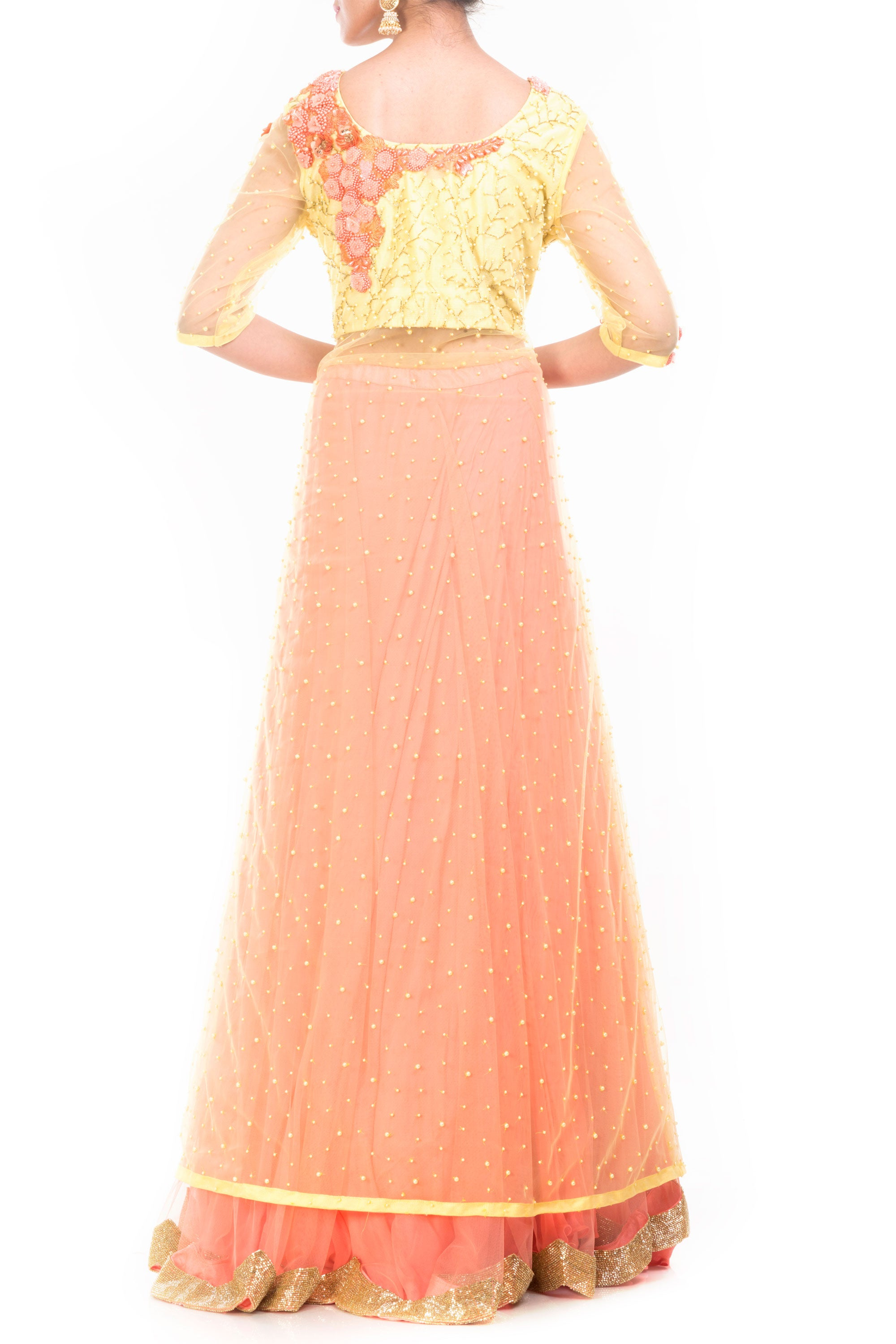 Lemon Strawberry Jacket Lehenga Back