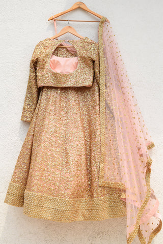 Rose Bud Pink & Gold Sequence Lehenga Set