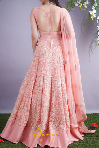 Blush Pink Lehenga & Choli Set