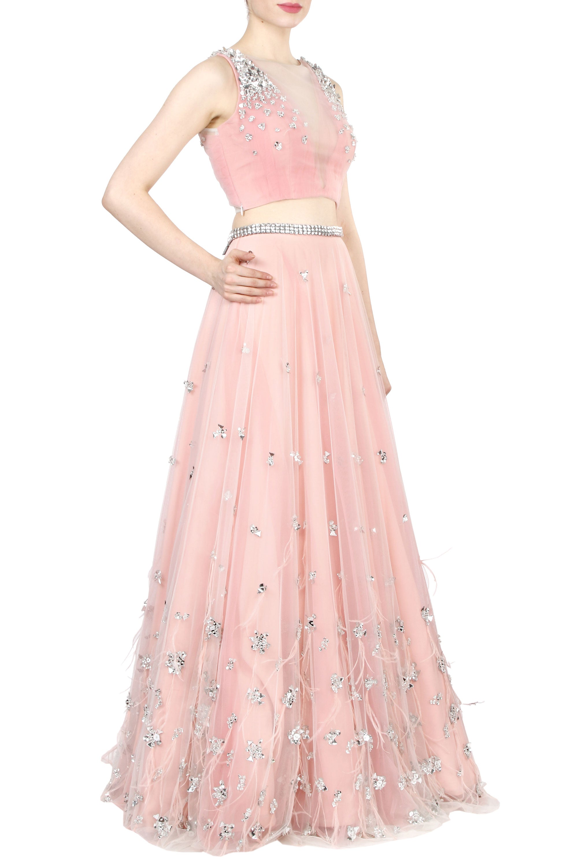 Blush Net Lehenga Side