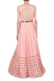 Blush Pink Gown with Gold Metallic Coin Work Back
