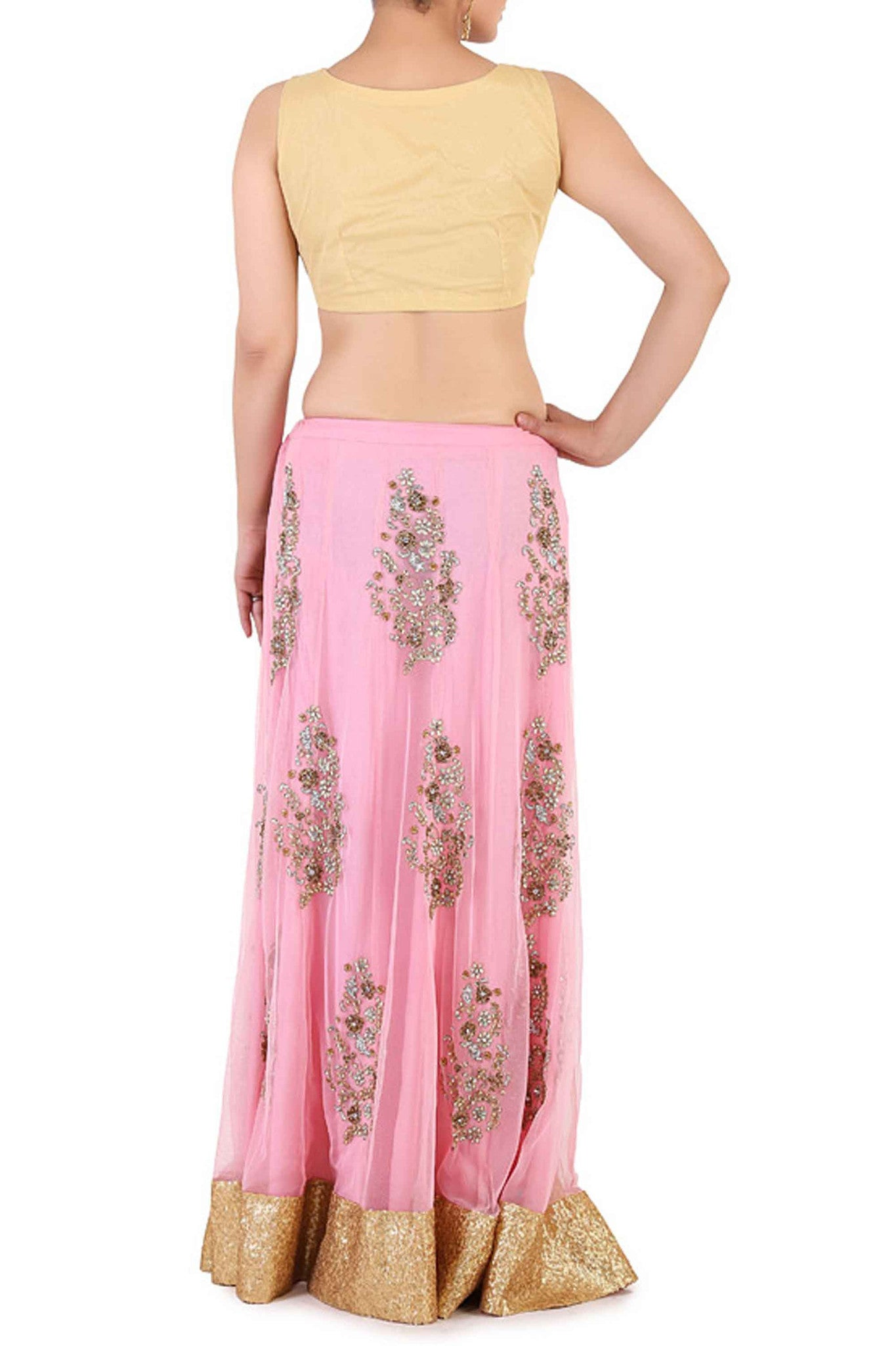 Pastel & Thread Work Lehenga Back