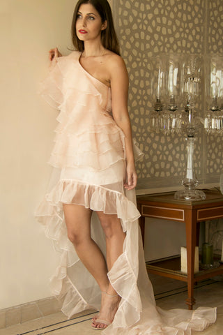 Nude Peach Organza Ruffled Dress