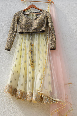 Banana Yellow Lehenga With Slate Grey Blouse & Cotton Candy Pink Dupatta