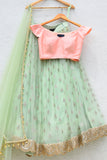 Mint Green Lehenga With Peach Pink Blouse Front
