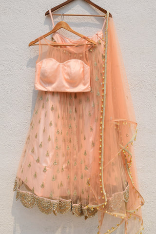 Rose Pink Lehenga With Plain Blouse & Dupatta Front