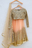 Desert Peach Sand Sequins Lehenga & Nude Gold Sequins Blouse Back