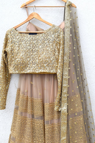 Peanut Tan Lehenga With Nude Gold Sequins Blouse & Grey Dupatta