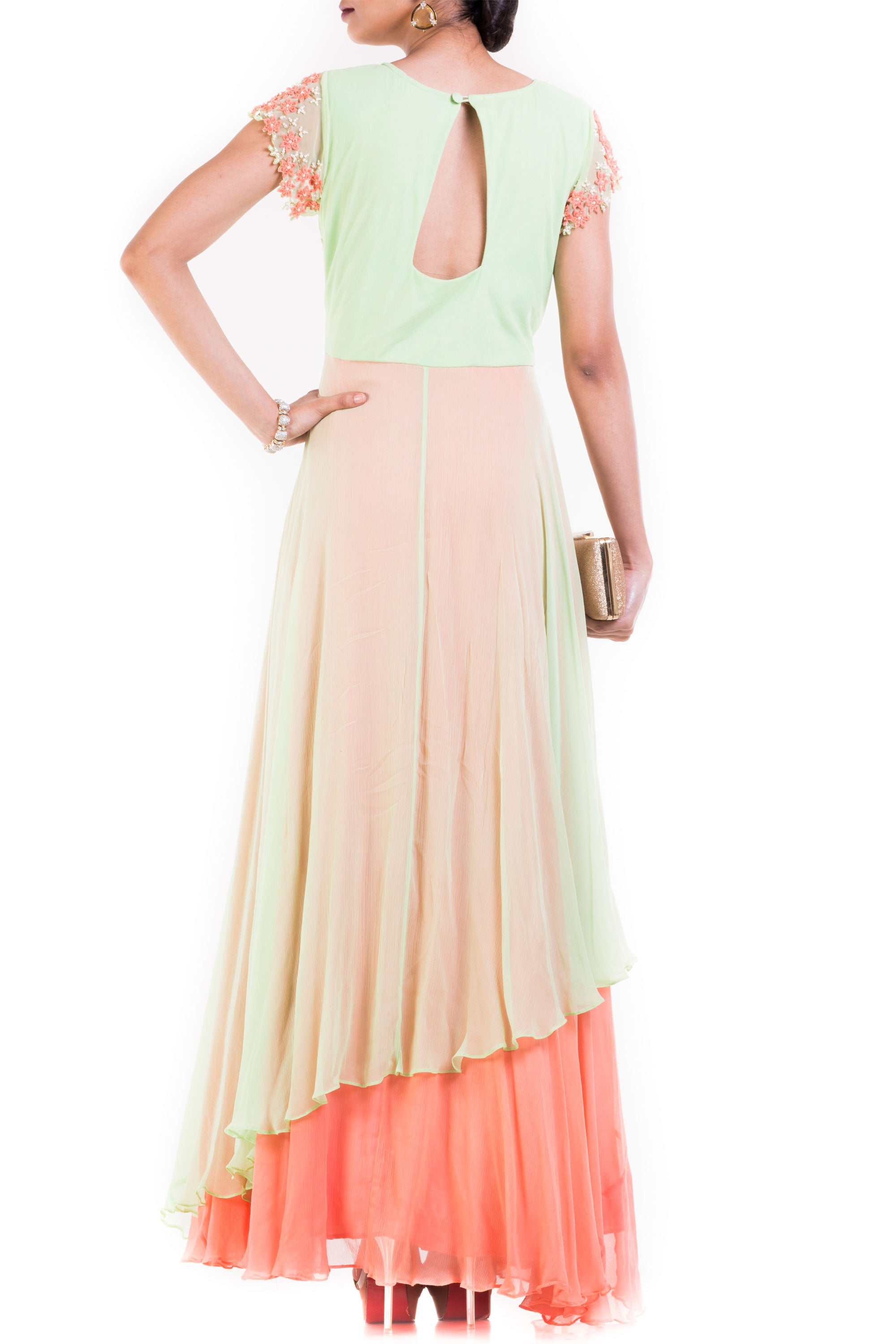 Pastel Green And Orange Double Layer Gown Back