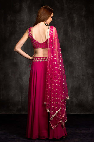 The Pink Mia Mirror Lehenga Set